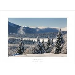 Les Hautes Combes - Jura