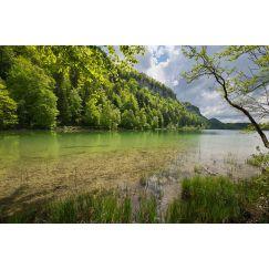 Lac jurassien 10