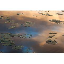 Lac jurassien 11