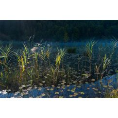 Lac jurassien 12