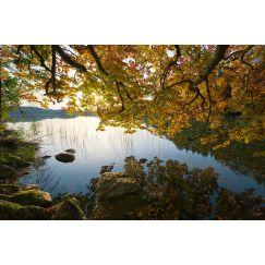 Lac jurassien 18