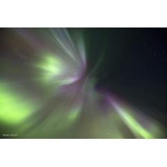 Corona aurora