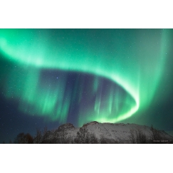 Norway show